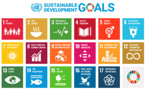The 17 sustainable development goals
